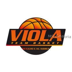 team_basket_viola