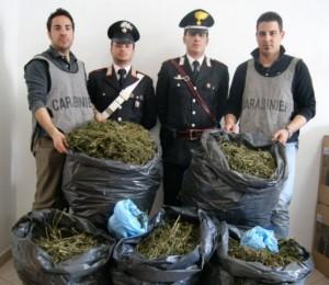 droga arresti Palmi