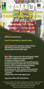 evento 11 maggio roma