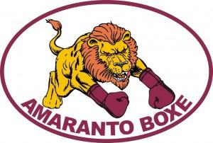 Logo Amaranto boxe 300x202 Reggio Calabria, il 6 giugno lAmaranto Boxe festeggia 20 anni di attività