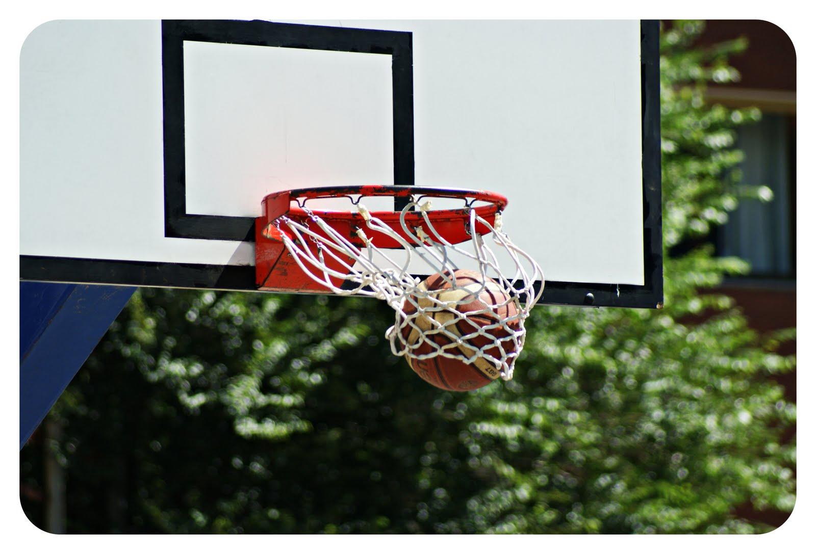 Basket il cosenza lavora per ginefra for Cucinare diaframma