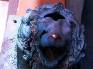leone bronzo