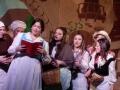 musical-la-bella-e-la-bestia (9)