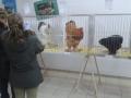 mostra-avicoli-ornamentali-20