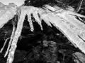 neve-roccaforte-gennaio-2017 (8)
