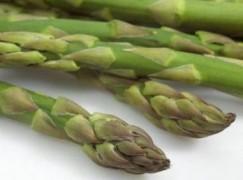 Insalata di asparagi selvatici