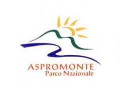 Ielo vice presidente dell'Ente Parco dell'Aspromonte