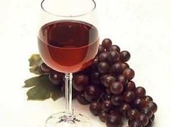 Reggio Calabria, selezioni e degustazioni dei vini regionali