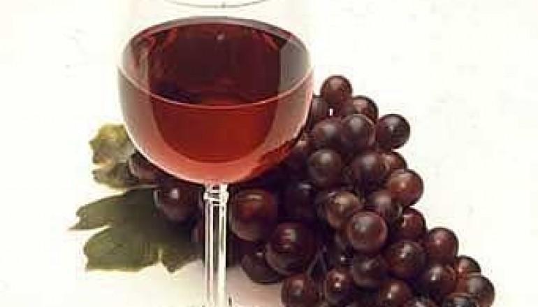 Il Vino Calabrese al Tuttofood 2015