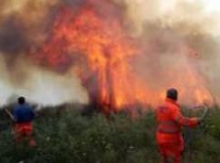 Calabria, incendi in tutta la regione. In azione Canadair ed elicotteri