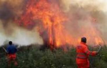 Calabria, in fiamme boschi, sterpaglie e macchia mediterranea