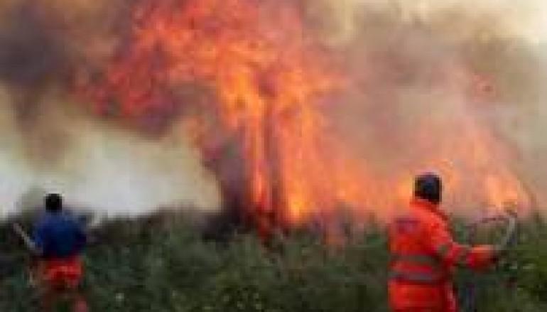 Orsomarso (Cs), 76enne arrestato per aver provocato incendio
