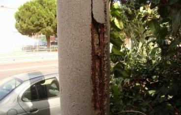 Motta San Giovanni (Rc), le foto del palo Enel che porta pericolo