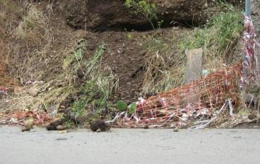 Reggio Calabria, le foto dei danni dell'alluvione