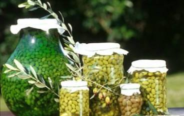 Olive in concia