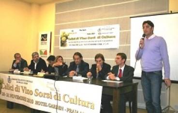Cosenza: Vini, tradizioni e cultura, da Praia a Mare a Reggio Calabria