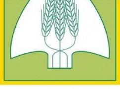 Reggio Calabria, Coldiretti su danni provocati dal maltempo alle produzioni agricole nell'Area Grecanica
