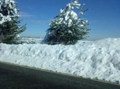 Neve sui tratti montani tra Lagonegro e Campotenese
