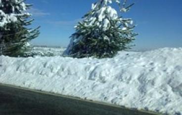 Calabria, scuole chiuse anche domani causa neve