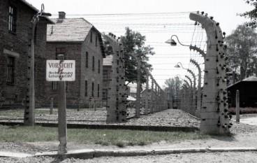 """Cosenza, studenti viaggeranno su """"Treno della memoria"""" per ricordare sterminio nazista"""