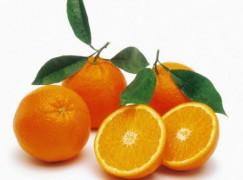"""Coldiretti: """"Stop all'aranciata senza arancia, provvedimento in Gazzetta"""""""
