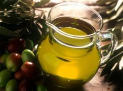 Nasce comitato assaggio per olio d'oliva