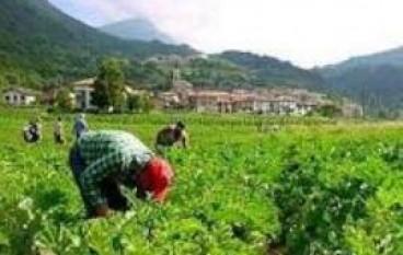 Rosarno (RC), iniziative in difesa della terra e di chi la lavora