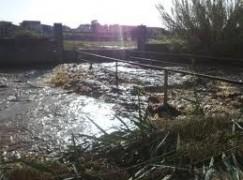 Reggio Calabria, conta dei danni arrecati all'agricoltura dopo gli ultimi eventi calamitosi