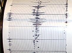 Terremoti, scossa di magnitudo 2.9 nel reggino