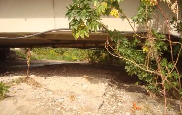 """Reggio Calabria, il Comitato Spontaneo """"Torrente Oliveto"""" su pericolo per il ponte stradale"""