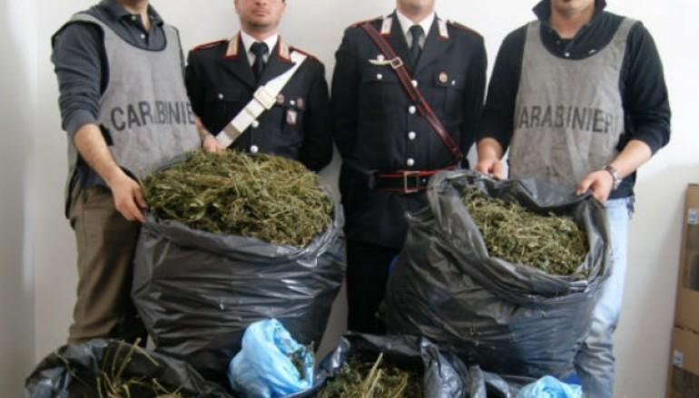 Palmi (RC), arrestati 2 giovani per detenzione ai fini di spaccio di droga