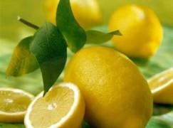 Liquore di limoni