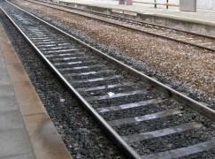 Ferrovie Taurensi: ecco il progetto
