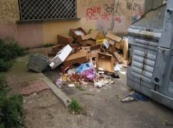 Gioia Tauro (RC), Bellofiore su controlli scarti animali