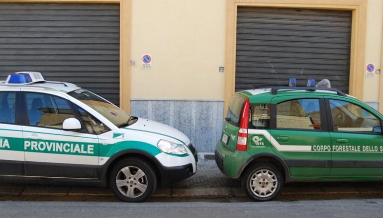 Reggio Calabria, deferite 4 persone per reati contro l'ambiente