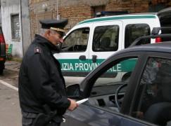 """Polizia Provinciale, parte il piano """"Estate tranquilla"""""""
