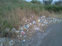 Il MoVimento 5 Stelle Catanzaro denuncia il degrado igienico-ambientale