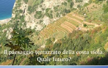 """Scilla (RC), il 3 dicembre convegno su """"Il paesaggio terrazzato della Costa Viola. Quale futuro?"""""""