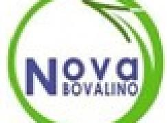 """Nova Bovalino (Gruppo Consiliare): """"Occorrono forti iniziative per contrastare questo fenomeno"""""""