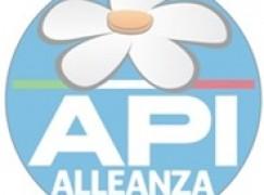 Reggio Calabria, API sull'attentato al Centro Sociale Angelina Cartella di Gallico