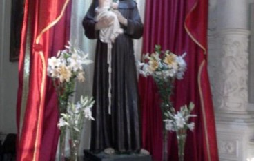 San Marco Argentano: L'analisi del culto antoniano