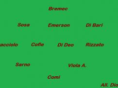 Ecco come potrebbe presentarsi la Reggina 2012/2013
