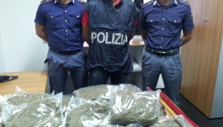 Coltivava e confezionava marijuana a Bianco (RC), la Polizia arresta la donna