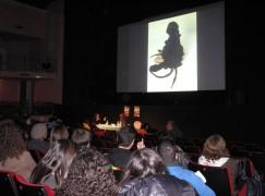 Reggio Calabria, film e dibattito sui moti. Giovedì cerimonia di premiazione