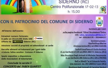 Al Centro Polifunzionale di Siderno la 4^ edizione della Mostra Cinofila Amatoriale