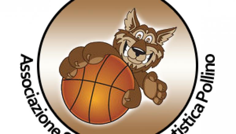 Basket, ASD Pollino  in C2