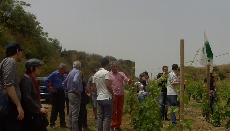 Il Bio tra cultura e colture chiude la Primavera Bio 2013 di AIAB Calabria
