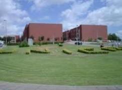 Unical, 700 studenti stranieri iscritti