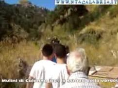 Mulini di Calanna (Rc), il video della vergogna