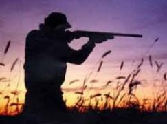 In Calabria chiusura anticipata della caccia al tordo